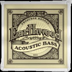 Jeu Ernie Ball Earthwood...