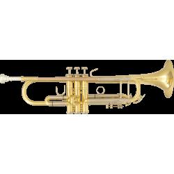 SML Trompette SiB Laiton Verni