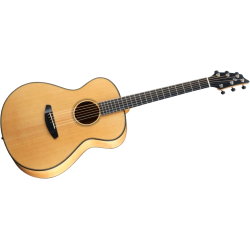 Breedlove Oregon 2014 Concert E/A
